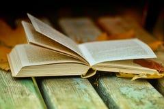 Abra el libro y las hojas de otoño Imagen de archivo