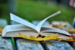 Abra el libro y las hojas de otoño Fotos de archivo