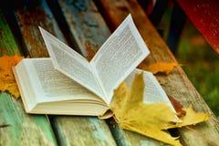 Abra el libro y las hojas de otoño Imagen de archivo libre de regalías