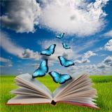 Abra el libro y las mariposas fotos de archivo libres de regalías