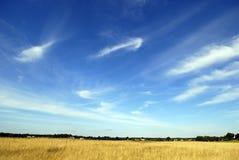 Abra el prado con el cielo azul Fotos de archivo