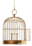 Abra a gaiola de pássaro fotos de stock royalty free