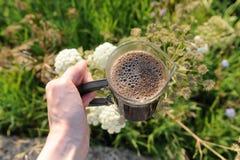 Abra a imprensa do francês com café à disposição recentemente fabricado cerveja da espuma no fundo da natureza imagem de stock royalty free