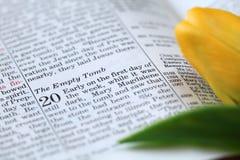Abra la biblia con el texto en Juan 20 sobre la resurrección fotos de archivo libres de regalías