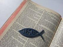 Abra la biblia con Jesus Fish Fotos de archivo