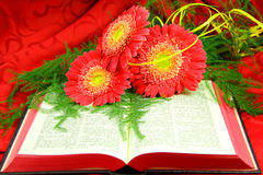 Abra la biblia y las flores Fotografía de archivo libre de regalías