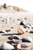 Abra la cáscara en la playa Fotografía de archivo