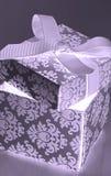 Abra la caja de regalo Imagenes de archivo