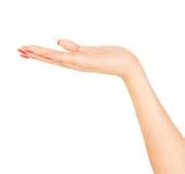 Abra la mano de la mujer en el fondo blanco fotografía de archivo