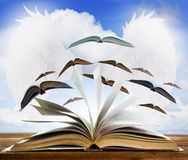 Abra la página del libro viejo en la tabla de madera con la página del libro de vuelo contra b Imagen de archivo libre de regalías