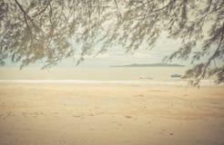 Abra la playa con las hojas enmarcadas Fotografía de archivo libre de regalías