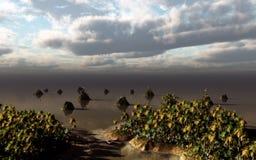 Abra la tarde del lago horizon Imágenes de archivo libres de regalías