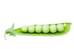 Abra la vaina de guisantes verdes foto de archivo libre de regalías