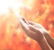 Abra las manos vacías Imagen de archivo libre de regalías