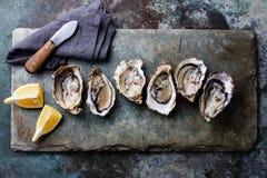 Abra las ostras con el limón fotografía de archivo