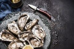 Abra las ostras crudas en la placa del vintage con el limón y el cuchillo de las ostras, fondo oscuro, visión superior Fotos de archivo libres de regalías