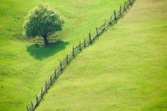 Abra los campos de hierba Foto de archivo libre de regalías