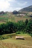 Abra los campos, Guatemala Fotos de archivo libres de regalías
