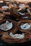 Abra los cocos Foto de archivo