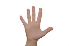 Abra a mão Imagem de Stock Royalty Free