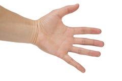 Abra a mão Imagem de Stock