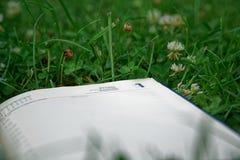 Abra o caderno na grama verde no parque imagens de stock