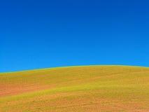 Abra o campo & o céu Imagem de Stock