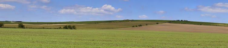 Abra o campo de exploração agrícola Imagens de Stock Royalty Free