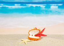Abra o dissipador e as estrelas do mar na costa de mar Fotografia de Stock