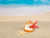 Abra o dissipador e as estrelas do mar na costa de mar Fotografia de Stock Royalty Free