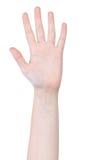 Abra o gesto de mão de cinco dedos Fotos de Stock Royalty Free