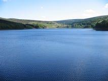 Abra o lago e o campo Imagem de Stock