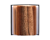 Abra o livro Imagem de Stock