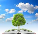 Abra o livro com árvore e grama Fotos de Stock Royalty Free