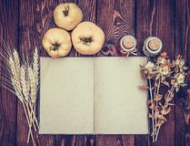 Abra o livro com páginas vazias em um fundo do outono O marmelo, trigo, secou ervas, garrafas e um livro aberto na placa de madei imagem de stock