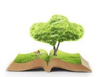 Abra o livro da natureza Foto de Stock Royalty Free
