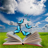Abra o livro e as borboletas Fotos de Stock Royalty Free