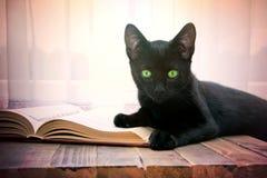 Abra o livro e o gato preto na tabela de madeira Fotografia de Stock Royalty Free