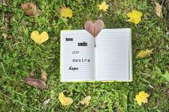 Abra o livro em um fundo da grama verde com folhas de outono Imagens de Stock