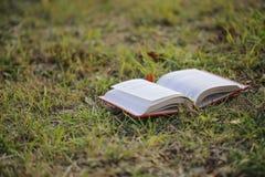 Abra o livro na grama Imagem de Stock