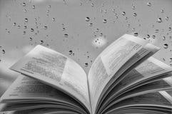 Abra o livro perto do indicador Fotografia de Stock