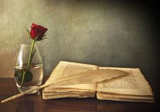 Abra o livro velho, uma rosa em um vaso e uma pena Fotos de Stock Royalty Free