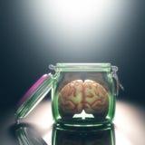Abra o mindedness foto de stock