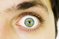 Abra o olho cinzento Imagem de Stock Royalty Free