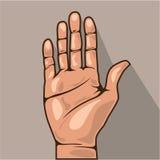 Abra o vetor da mão Foto de Stock