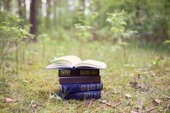 Abra os livros exteriores Livros nas madeiras foto de stock