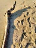 Abra una sesión la costa, playa de la arena foto de archivo