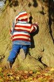 Abraçando uma árvore Fotografia de Stock Royalty Free