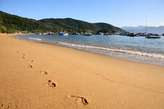 Abraao beach ilha grande Royalty Free Stock Photography