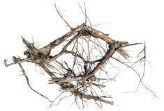 Abracadabra di legno Fotografie Stock Libere da Diritti